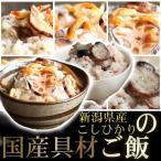 簡単調理 新潟県産 丼ご飯 カレーライス 玄米 おにぎ