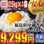 米 お米 平成28年産 福島県中通り産コシヒカリ 玄米:25kg(25Kg×1袋) 送料無料  沖縄送料900円