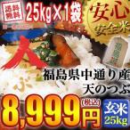 ショッピング玄米 米 お米 平成29年産 福島県中通り産天のつぶ 玄米:25kg(25Kg×1袋) 送料無料  沖縄送料3,000円