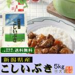 新潟県産こしいぶき(令和元年産)5kg【送料無料(本州のみ)】