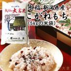 【もち米】新潟県産こがねもち米(令和2年産)1kg 【10kg以上の同梱で送料無料(本州のみ)】