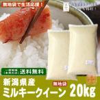 《無地袋シリーズ》新潟県産ミルキークイーン(令和元年産)20kg(10kg袋×2)【送料無料(本州のみ)】