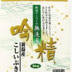 新米《無洗米》 新潟県産こしいぶき10kg(5kg×2袋)(令和2年産) 【送料無料(本州のみ)】