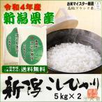 新潟県産コシヒカリ (平成29年産)10kg (5kg×2袋)【送料無料(本州のみ)】