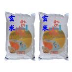 【玄米】 福島県産チヨニシキ10kg (5kg×2袋) 令和2年産 石抜き処理済「ふくしまプライド。体感キャンペーン(お米)」