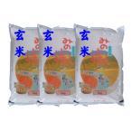 【玄米】 福島県産チヨニシキ15kg (5kg×3袋) 令和2年産 石抜き処理済「ふくしまプライド。体感キャンペーン(お米)」