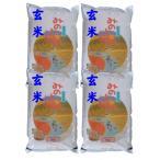 【玄米】 福島県産チヨニシキ20kg (5kg×4袋) 令和2年産 石抜き処理済「ふくしまプライド。体感キャンペーン(お米)」