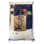 【玄米】 新潟県産コシヒカリ5kg 令和2年産 石抜き処理済
