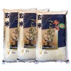 【玄米】 新潟県産コシヒカリ15kg(5kg×3袋) 令和2年産 石抜き処理済