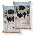 【玄米】 福島県田村産ひとめぼれ10kg (5kg×2袋) 平成28年産 石抜き処理済