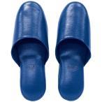 アニリン抗菌スリッパ ブルー 1足(2個) スリッパ 携帯スリッパ 室内履き フリーサイズ 来客用 部屋用 男女兼用 アーテック 5901