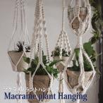 プラントハンギング プラントハンガー マクラメプラントハンギング(2-4)鉢吊 吊るし ハンギング 壁掛け 天井 吊 鉢植え マクラメ ガーデニング インテリアの写真