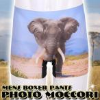 メンズ ボクサーパンツ photo moccori(サファリ)アンダーウエア 下着 プレゼント SAFARI 象 ゾウ 動物 ジョーク おもしろ クリアストーン 4560320855064