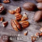 ピーカンナッツ 殻付き 生 200g ナッツ 日本初輸入 オイル不使用 無塩 ピーカンパイ 健康 くるみ おつまみ 製パン  お中元 おやつ クルミ科