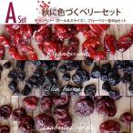 【メール便送料無料】秋のドライフルーツセットA 秋に色づくベリーセット