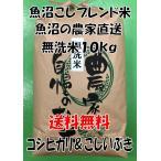 送料無料 お米 農家保有米 在庫処分 魚沼産コシヒカリ 新潟県産こしいぶき 無洗米 ブレンド10kg