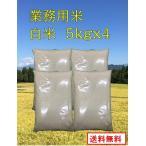 【業務用お米 白米 5kg x 4袋】 生活応援米業務用  新潟産 5キロx4袋 業務用米 20kg  送料無料