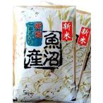 【新米】《28年産》魚沼産コシヒカリ10kg(5Kg×2袋)【白米】  【送料無料】