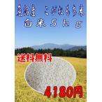 こがねもち もち米 白米 5Kg 30年産 魚沼産こがねもち 新潟県産100%  赤飯 おこわ
