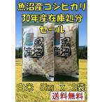 【30年産 魚沼産コシヒカリ  白米 10kg(5Kg×2袋)】  送料無料 お米 新潟県 在庫処分セール 数量限定