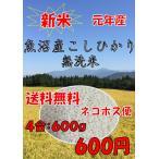魚沼産こしひかり 元年産 お試し 送料無料 ポイント消化 新米 コシヒカリ無洗米600g