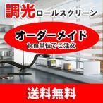 調光ロールスクリーン ドロシーL20-001:横(50〜60)縦(90〜100)