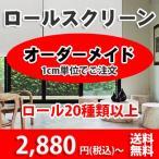 ロールスクリーン ドミノ RS41-002:横(50〜60)縦(101〜140)