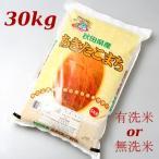 秋田県産 あきたこまち 30kg※有洗米or無洗米
