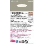 パナソニック照明器具 LSEB5065LE1 (LGB73402LE1相当品) ダウンライト 一般形 LED