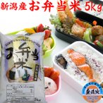 お弁当米5kg(無洗米) 29年産 新潟県 妙高産
