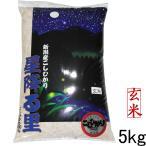 コシヒカリデラックス5kg(玄米)新潟県 妙高産(28年産 特A)