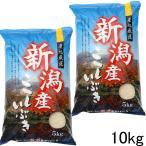 米 10kg 新潟産 こしいぶき 10kg  (5kg×2袋)  精米 白米 令和2年 新潟県産 お米 10キロ ベストストア 2位 農家直送 安いお米 10キロ 美味しい米