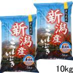 新潟産こしいぶき10kg(無洗米) 29年産 美味しいお米 無洗米10kg 5kg×2袋