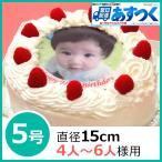 写真ケーキ(丸) 5号 生クリーム【冷凍 到着後は冷蔵庫で3〜4時間保管解凍】 【あすつく対応 定休日は不可】誕生日ケーキ 直径15cm