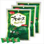 森川健康堂 プロポリスキャンディー 100g × 3袋 1袋あたり455円 当日発送(平日12時受付迄)で送料無料