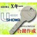 送料無料 限定特別価格 U-shin SHOWA 合鍵 Xキー カギ 合鍵・ユーシンショウワ純正キーディンプルキー トステム LIXIL TOSTEM YKK  ネコポス配送[代引き不可]
