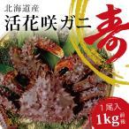花蟹 - お歳暮 活カニ 花咲ガニ 北海道産 希少 カニ 花咲蟹 1kg オス 濃厚な甘味 数量限定 活けカニ