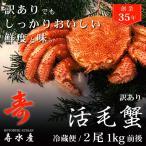 訳あり活毛ガニ 500g前後×2尾セット 北海道産 冷蔵 毛がに 堅ガニ 2金 かに 蟹