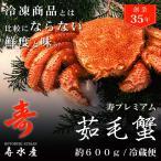 北海道産 カニ 高級毛蟹を自宅で堪能!料亭ご用達の寿 朝茹で毛ガニ (600g) 冷蔵 ギフト 贈答 けがに かに 浜茹で