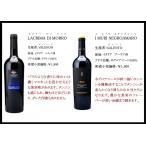 フルボディ!イタリア赤ワイン6本セット 送料無料 750ml