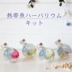 ハーバリウム キット 花材+瓶+オイル 熱帯魚 あじさい かすみ草 シルバーデージー プリザーブドフラワーキット