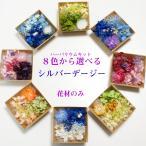 kotohana_herbarium-kit01