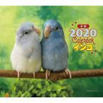 【誠文堂新光社】2020年版 ミニ判カレンダー インコ