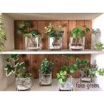 観葉植物 フェイクグリーン造花 シュガーバイン アイビー ウォーターアレンジ マジカルウォーター 人口固型水 ガラスキューブ