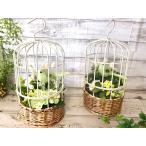 観葉植物 造花 鳥かご フェイクグリーン アートフラワー 人口観葉植物 パステルバード インテリア グリーン バラ