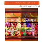 Yahoo! Yahoo!ショッピング(ヤフー ショッピング)DearJungle ディアジャングル シャンプー トリートメント ノンシリコン スカルプ 1dayトライヤル セット 日本製