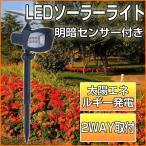 LEDソーラーライト ガーデンライト スポットライト 太陽発電 省エネ 明暗センサー 昼光色 防犯ライト ledライト 防水 黒