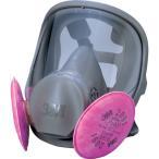3M 取替式防じんマスク 6000F/2091−RL3 Lサイズ 6000F/2091-RL3L