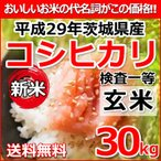 ショッピング分けあり 新米 平成29年 茨城県産 コシヒカリ 検査一等玄米 30kg (小分け対応可) 送料無料―離島・沖縄は送料別 お米 玄米