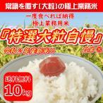 ◆令和2年産 新米『特選業務用米』精米(白米)10kg(10kg×1袋)送料無料(沖縄・離島除く)
